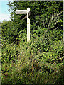 TM1441 : Bridleway sign off Bobbits Lane by Adrian Cable
