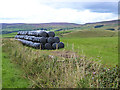 NY5546 : Roadside bales above Walmersyke by Oliver Dixon