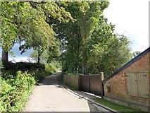 ST1005 : Long-go Lane, Broadhembury by David Smith