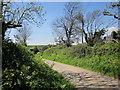 SX7946 : Approaching Alston by Derek Harper