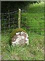 NY6043 : Boundary stone at Raven Bridge by Oliver Dixon