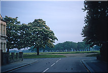 TQ4085 : Early morning view of Wanstead Flats by Jeremy Withrington