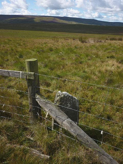 Boundary stone on Summersgill Fell