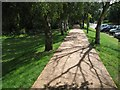 SP3075 : Footpath on a bund by Health Centre Road, University of Warwick, Coventry by Robin Stott