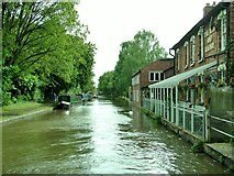 SO9466 : The Boat And Railway public house, Worcester & Birmingham Canal by Peter Evans