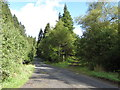 NY6294 : Disused Border Counties Railway & forest track, Catcleugh Plantation by Andrew Curtis
