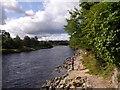 NO7095 : Upstrean River Dee by Stanley Howe