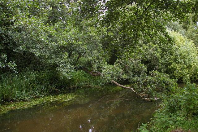 River Bure downstream of Blickling Mill