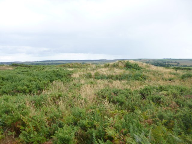 Blacknoll Hill, tumuli