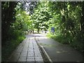 SP3075 : Bridge over the Canley Brook, University of Warwick, Coventry by Robin Stott