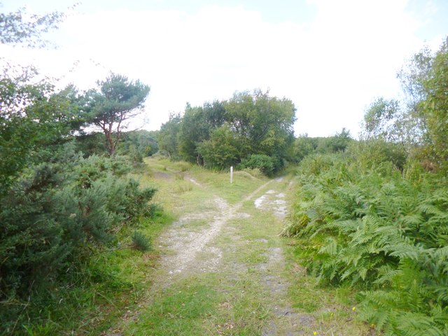 Winfrith Heath, track junction