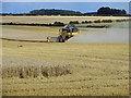 TA0512 : Harvesting on Elsham Wolds by David Wright