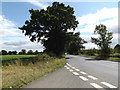 TM0835 : B1070 Mill Road, East Bergholt by Adrian Cable