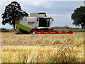 TM0636 : Claas Lexion 460 Combine Harvester by Adrian Cable