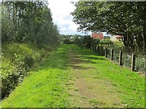 NT5084 : Ditch and path, Archerfield by Richard Webb