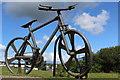 NS5070 : Bankie's Bike by Leslie Barrie