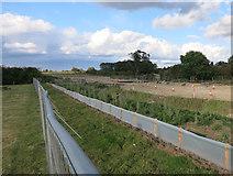 TL4259 : Road construction, Cambridge University Farm by Hugh Venables