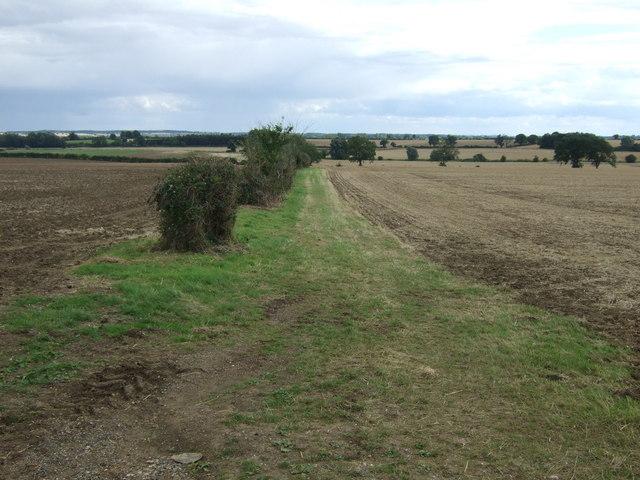 Farm track near Willow Bank Farm