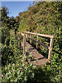 TL3858 : Footbridge over Bin Brook by Kim Fyson