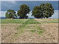 TQ0650 : Path across the fields by Alan Hunt
