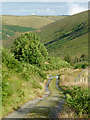 SN7553 : Byway in Cwm Doethie, Ceredigion by Roger  Kidd