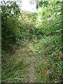 SP0946 : Bridleway heading north to Hoden Farm by Christine Johnstone