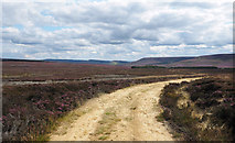SE4996 : Estate road and moorland near Miley Pike by Trevor Littlewood