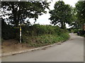 TM0733 : Lane & footpath to Flatford Mill by Adrian Cable