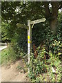 TM0733 : Footpath sign near Bridge Cottage by Adrian Cable