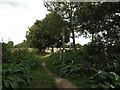 TM0733 : Footpath at Flatford by Adrian Cable