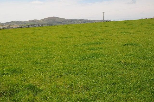 Farmland on the Lleyn peninsula