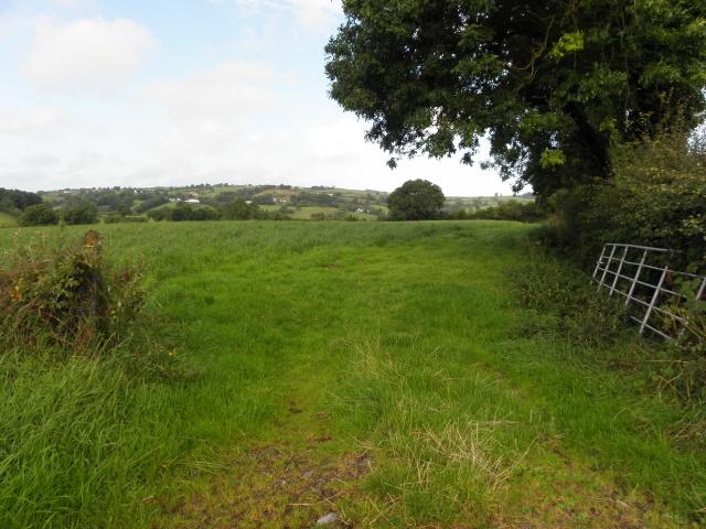An open field, Tullylinton