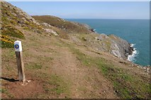 SH1325 : The west tip of the Lleyn peninsula by Philip Halling