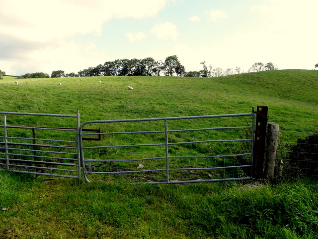 Gate, Tullybyran