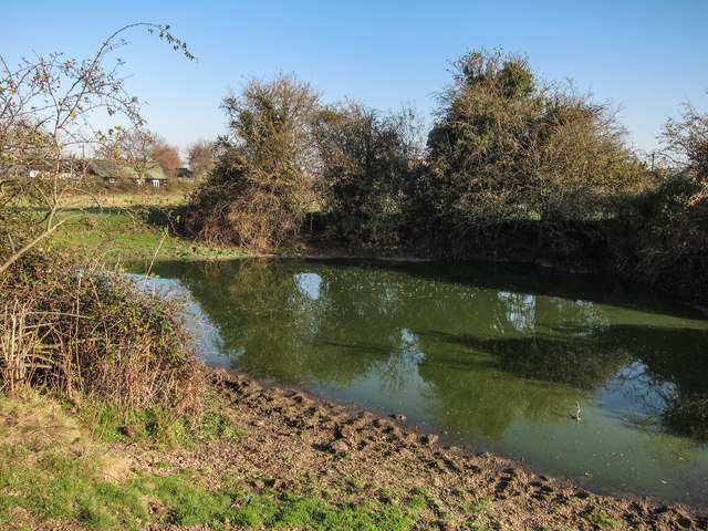 Pond in Wort's Meadow