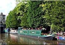 SD9926 : Tadpole - a floating garden by Graham Hogg