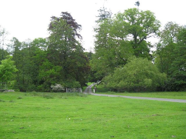 Roadway through the park-Brampton Bryan, Herefordshire