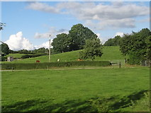 N0738 : Fields south of Athlone by Ian Paterson