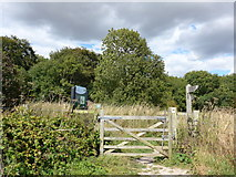SU6022 : South Downs Way, Winchester to Exton (166) by Basher Eyre