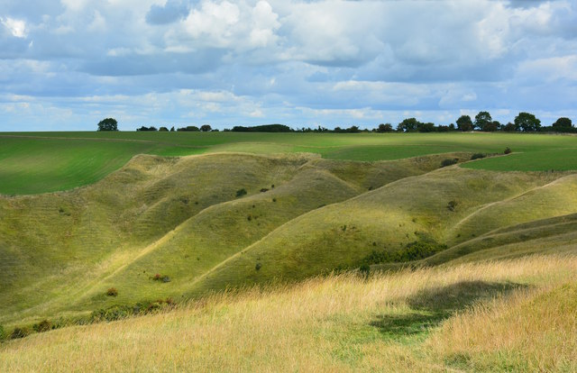 Downland near Oliver's Castle, Wiltshire