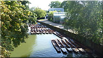 SP5206 : Moored punts on the Cherwell beside the Botanic Gardens, Oxford in late summer by Jeremy Bolwell