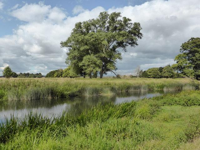 Charlecote Park - River Avon