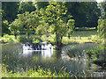 SP2556 : Charlecote Park - The Cascades by Chris Allen