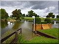 TF0405 : The Anniversary Splash - Fence 28 by Richard Humphrey