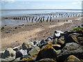 TR0468 : The beach at Shellbeach by Marathon
