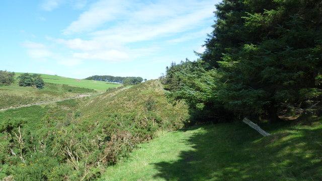 On Offa's Dyke Path