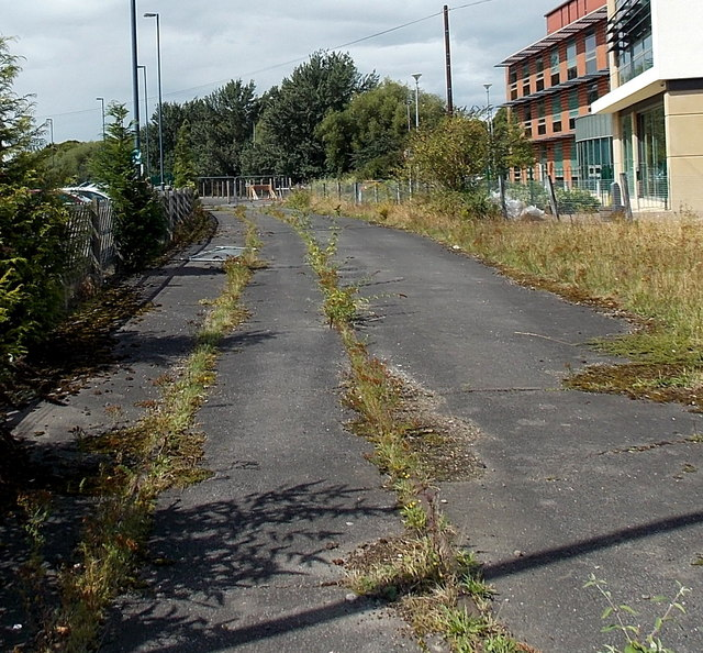 Weed-covered disused railway track, Melton Mowbray