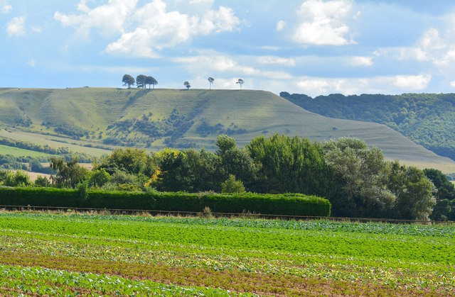 View over farmland to Oliver's Castle, Bromham, Wiltshire
