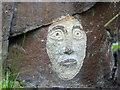 SE4006 : Rock face #1 by Steve  Fareham