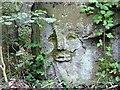SE4006 : Rock face #5 by Steve  Fareham